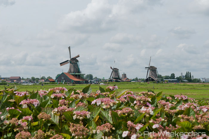 Windmills in Dutch art have an important role. But why so predominantly in Dutch art and less in other parts of Europe?