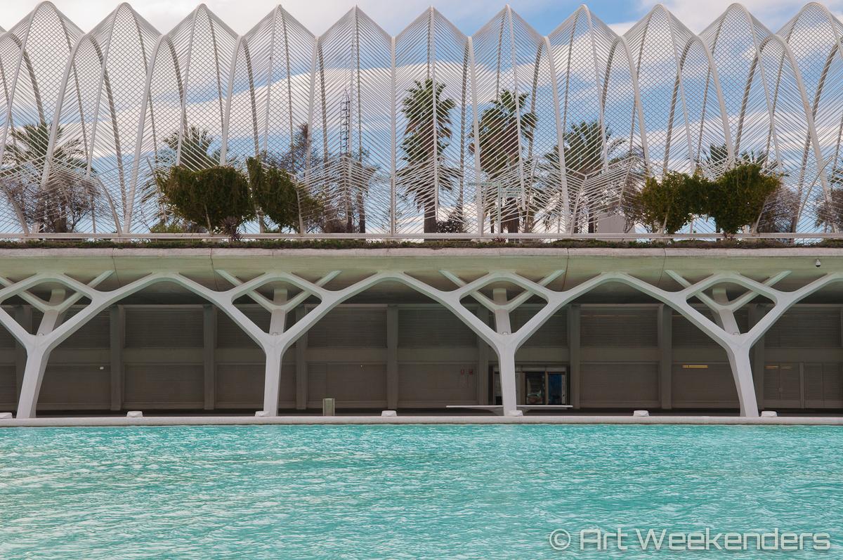 Valencia Ciudad de las Artes - Spain_Valencia_CiudaddelasArtesyCiencias_Lydian_Brunsting_AW10