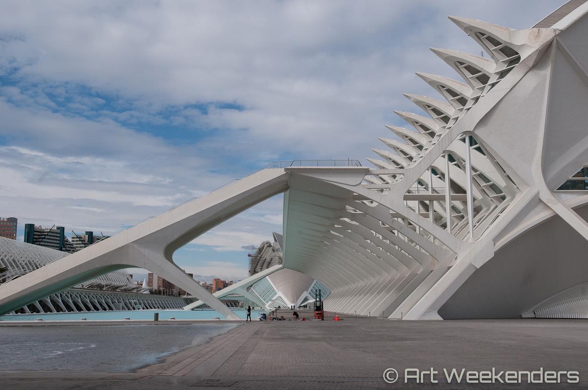Valencia's Ciudad de las Artes - Spain_Valencia_CiudaddelasArtesyCiencias_Lydian_Brunsting_AW12