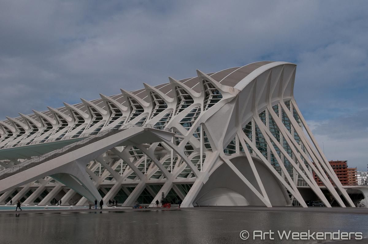Valencia's Ciudad de las Artes - Spain_Valencia_CiudaddelasArtesyCiencias_Lydian_Brunsting_AW13