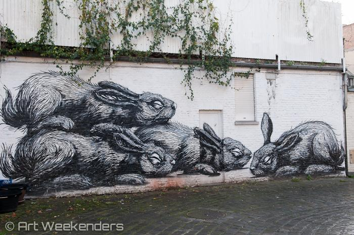 Belgium_Ghent_Street_Art_Roa